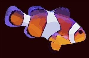 FISH-3857183_1280.jpeg